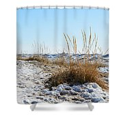Shore And Ice Shower Curtain