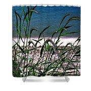 Shore Grass View Shower Curtain