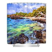 Shoreline At Puako Shower Curtain