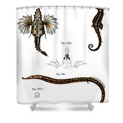 Short Dragonfish Shower Curtain