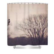 Short Eared Owl At Dusk Shower Curtain