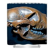 Short Faced Bear Shower Curtain