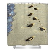 Short Lived Impressions Shower Curtain