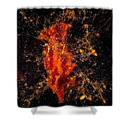 Shot Tomatoe Shower Curtain