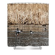 Shoveler Landing Shower Curtain