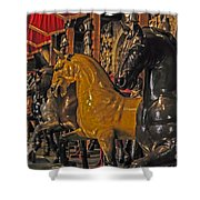 Showcase Of Royal Horses Shower Curtain