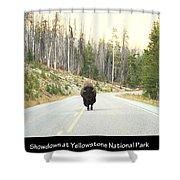 Showdown At Yellowstone Shower Curtain