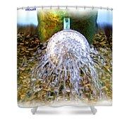 Shower Shower Curtain by Daniel Janda