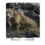 Shower Time Shower Curtain