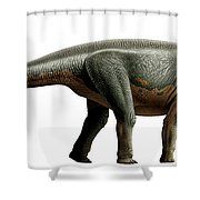 Shunosaurus, A Genus Of Sauropod Shower Curtain
