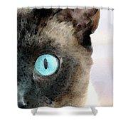 Siamese Cat Art - Half The Story Shower Curtain