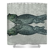 Siamese Twins Blue And Green Crocodiles On Sage Green Stone Shower Curtain