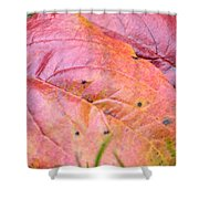 Side By Side They Fall Shower Curtain