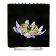 Side View Of A Tiny Paradise Shower Curtain