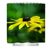 Side View Of A Yellow Flower Shower Curtain