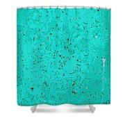 Sidewalk Abstract-13 Shower Curtain