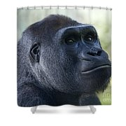 Sideways Glance Shower Curtain