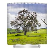Sierra Foothills And Clouds Shower Curtain