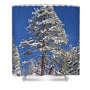 Sierra Snow Shower Curtain