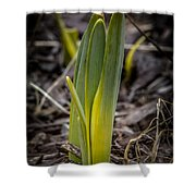 Sign Of Spring 2 Shower Curtain