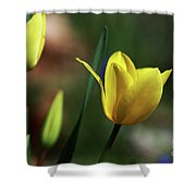 Signs Of Spring II Shower Curtain