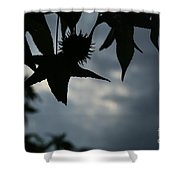 Sihouette Shower Curtain