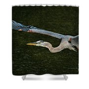 Silence In The Wings Shower Curtain
