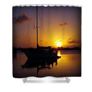 Silence Of Night Shower Curtain