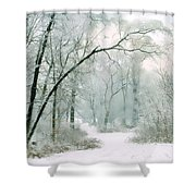 Silence Of Winter Shower Curtain