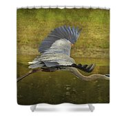Silent Grace Shower Curtain
