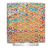 Silent Moon Shower Curtain
