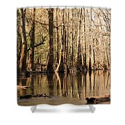 Silent Reflections Shower Curtain