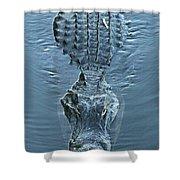 Submerged Alligator Approach Shower Curtain