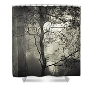 Silent Stirring Shower Curtain by Amy Weiss