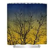 Silhouette Birds Sequel Shower Curtain
