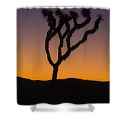 Silhouette Of A Joshua Tree At Sunset Shower Curtain