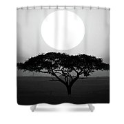 Silhouette Of A Tree At Sunrise Shower Curtain