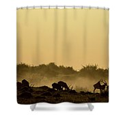 Silhouette Of Lechwe, Kobus Leche Shower Curtain