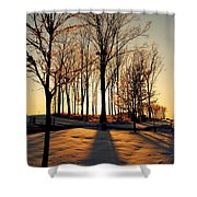 Silhouette Of Trees And Ice Shower Curtain