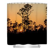 Silhouette Of Trees At Sunset Shower Curtain