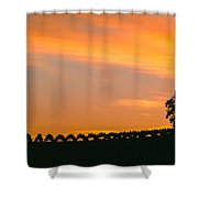 Silhouette Of Vineyard At Sunset, Paso Shower Curtain