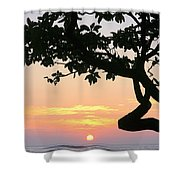 Silhouette Sunrise Shower Curtain
