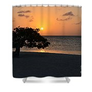 Silhouetted Divi Divi Tree Shower Curtain