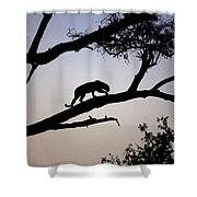 Silhouetted Leopard Shower Curtain