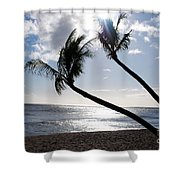 Silhouetted Palm Trees On Maui Beach Shower Curtain