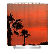 Silhouetted Palm Trees Shower Curtain