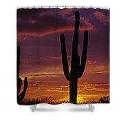 Silhouetted Saguaro Cactus Sunset  Arizona State Usa Shower Curtain