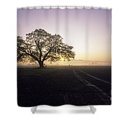 Silhouetted Tree In Field Sunrise Shower Curtain
