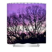 Silhouettes Against Pink Skies Shower Curtain