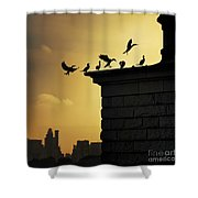 Silhouettes Of The Cormorants Shower Curtain